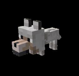 puppypush